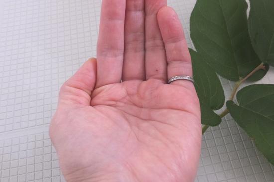手のひらにマイナチュレシャンプーを出した写真